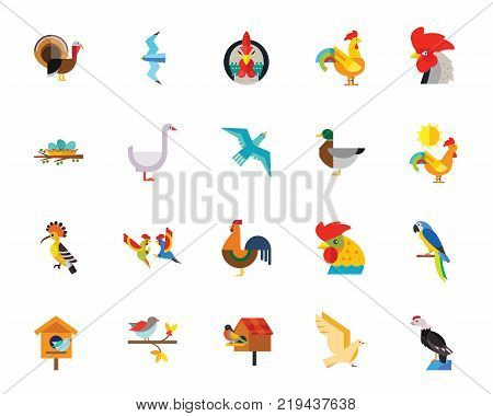 Birds icon set. Can be used for topics like animal, farm, zoo, ornithology poster