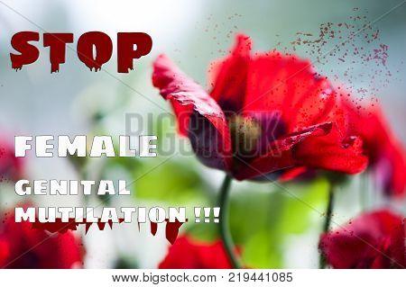 Stop female circumcision, stop  genital mutilation consept