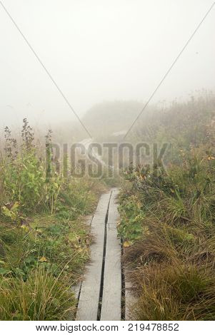 wooden walkways  a tourist route  through a mountainous grassy terrain hiding in a descending cloud