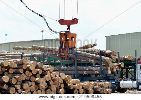 Loglift crane offloading logs from log transport truck