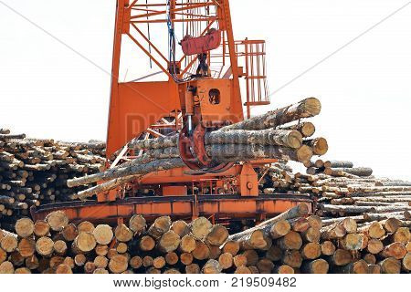 Loglift crane transferring logs to log stack