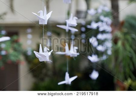 Craftwork paper birds origami hanging at garden for decoration decorative