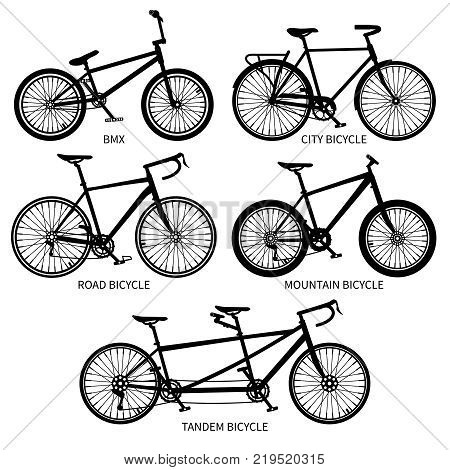 Bike types vector black silhouettes. Road, mountain, tandem bicycles isolated. Set of bicycle vintage, sport transport with pedal illustration