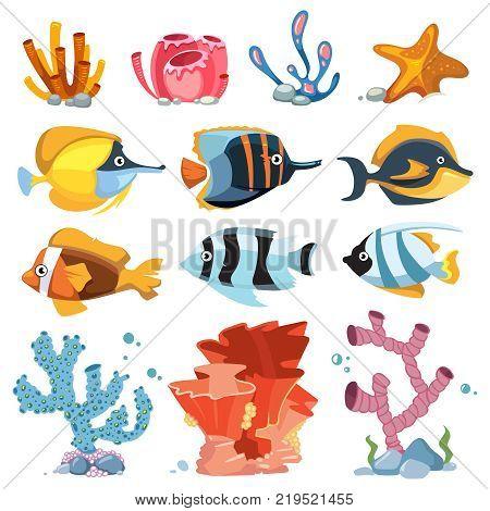 Vector cartoon aquarium decor objects - underwater plants, bright fish. Color coral and fish underwater illustration