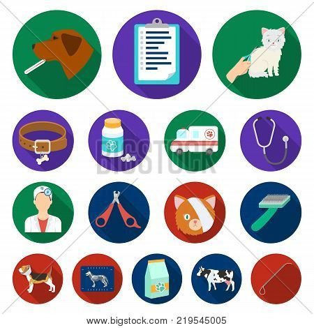 Veterinary clinic flat icons in set collection for design. Treatment of a pet vector symbol stock  illustration.