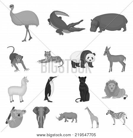 Different animals monochrome icons in set collection for design. Bird, predator and herbivore vector symbol stock  illustration.