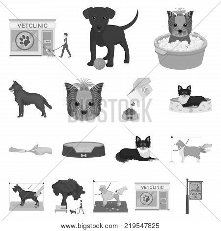 Pet monochrome icons in set collection for design. Care and education vector symbol stock illustration.