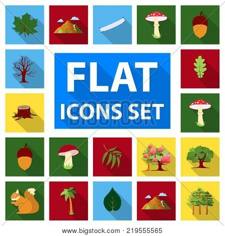 Forest and nature flat icons in set collection for design. Forest life vector symbol stock  illustration.