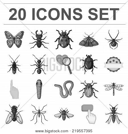 Different kinds of insects monochrome icons in set collection for design. Insect arthropod vector symbol stock  illustration.