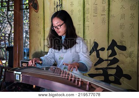 CHINA, SHANGHAI - NOVEMBER 7, 2017: Chinese girl is playing Guzheng or zheng. Chinese plucked zither a traditional chinese musical instrument at a Chinese New Year celebration.