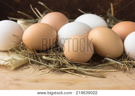 Close up of eggs in a basket. top view of eggs in bowl. Brown eggs in wooden bowl. Chicken Egg. Hen eggs baske
