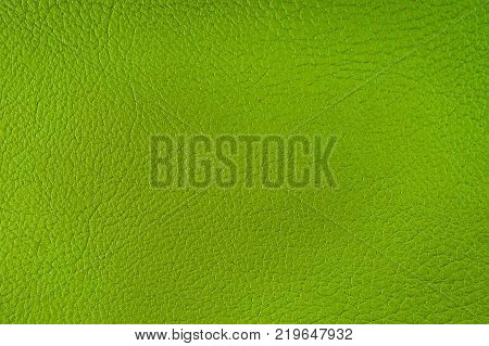 Texture of artificial leather. Background or backdrop of green leatherette. Fine embossing.