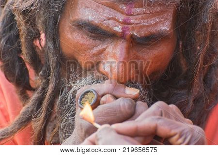 BABUGHAT KOLKATA WEST BENGAL / INDIA - 10TH JANUARY 2015 : Hindu Sadhu smoking marijuana locally called Ganja a form of canabis sativa .