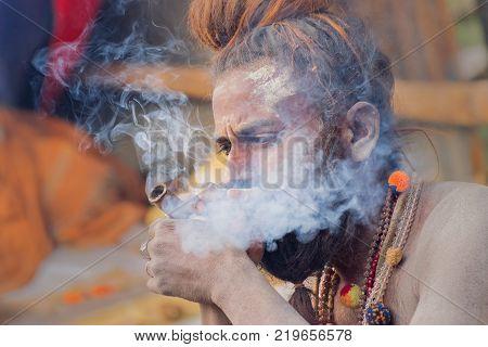BABUGHAT KOLKATA WEST BENGAL / INDIA - 11TH JANUARY 2015 : Hindu Sadhu smoking marijuana locally called Ganja a form of canabis sativa .
