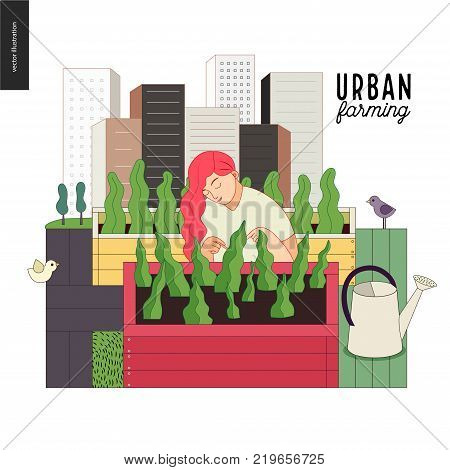 Urban farming, gardening or agriculture. A woman looking after the plants growing in the wooden box, surrounded by gardening tools, with a city tower buildings on the background