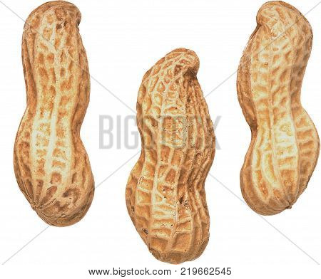 peanut kernels, Piece, Pieces, complete, whole, shelled peanuts, cookies
