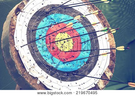 Archery Target And Arrows