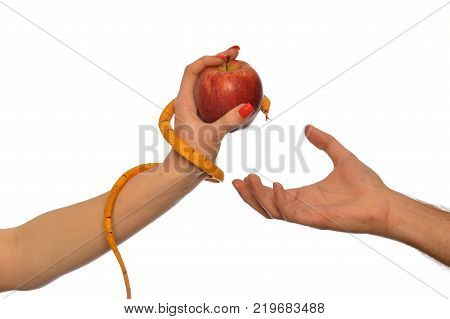 Metaphorical image of the symbolism of Adam and Eve 005