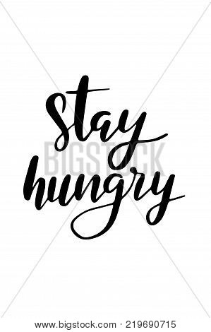 Hand drawn lettering. Ink illustration. Modern brush calligraphy. Isolated on white background. Stay hungry.