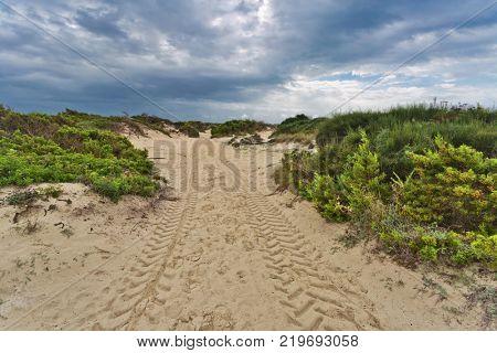 Way through the Dunes of Cala Mesquida under gloomy sky, Es Trenc beach, Ses Salines, Mallorca island, Spain Mediterranean Sea, Balearic Islands. poster