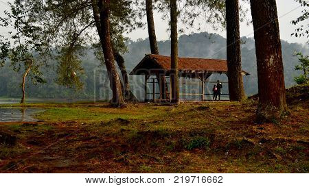 beautiful scenery of a shack in the forest and the lake
