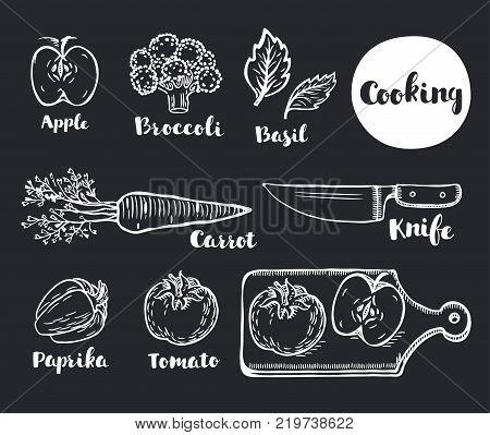 Vector cartoon illustartion of Vegetables eco vegan set chalk hand outline drawn doodle style. Lettering names