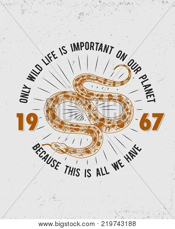 Viper snake. serpent cobra and python, anaconda or viper, royal. engraved hand drawn in old sketch, vintage style for sticker and tattoo. ophidian and asp. print for t-shirt