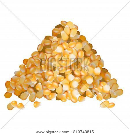 Golden corn seeds pile side view on white background vector illustration