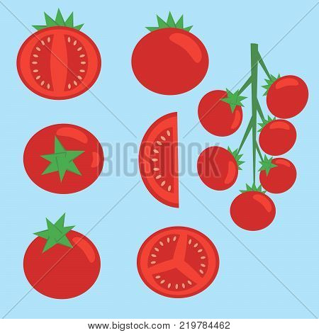 Collection of fresh red tomatoes vector flat material design isolated on blue. Half a tomato a slice of tomato cherry tomato.