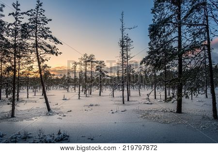 Scenic sunset with wetland at winter time in Finland