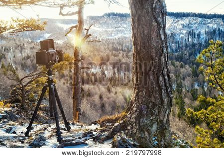 Bag and camera in nature color of vintage tone concept travel