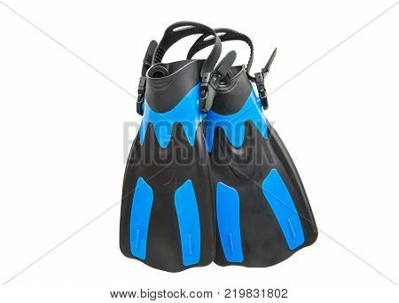 flippers sport instrument isolated on white background