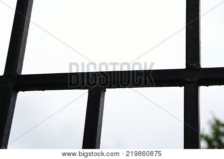 Close up iron bars or metal grating on window or prison cell bright blurred outdoor background copy space.