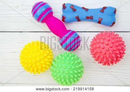 Pet care, veterinary, grooming concept. Pets having fun. Colorful rubber squeaky toys- balls and bones. Space for your text or product display.
