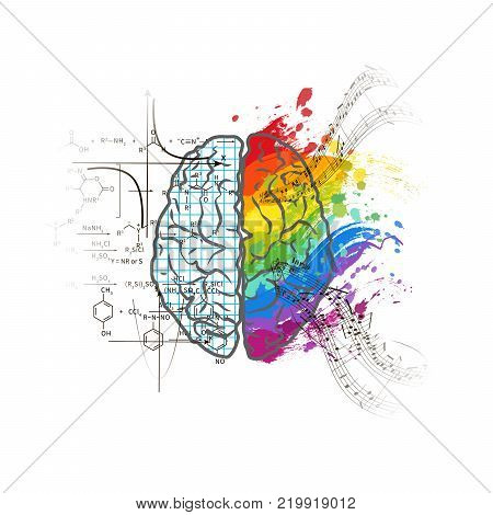 Technical and art hemispheres on human brain, left and right brain functions concept isolated on white