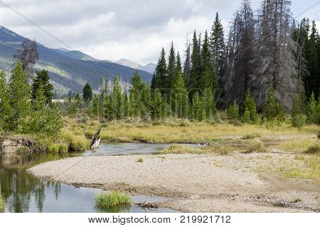 Nature Scenery in the Rocky Mountains of Colorado - Colorado River Headwaters