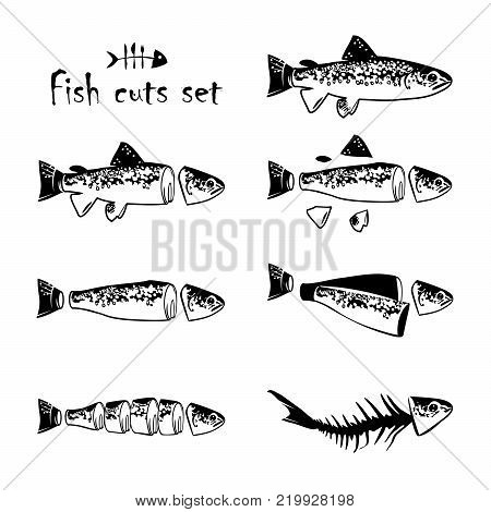 Trout cuts dagram - whole fish, pan dressed, fillets, steaks and fish carcass