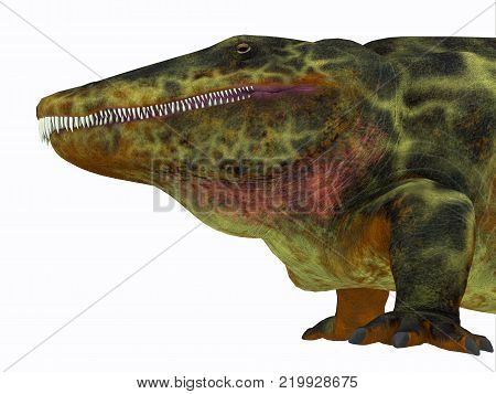 Eryops Dinosaur Head 3D illustration - Eryops was an semi-aquatic ambush predator much like the modern crocodile and lived in Texas, New Mexico and the Eastern USA in the Permian Period. poster