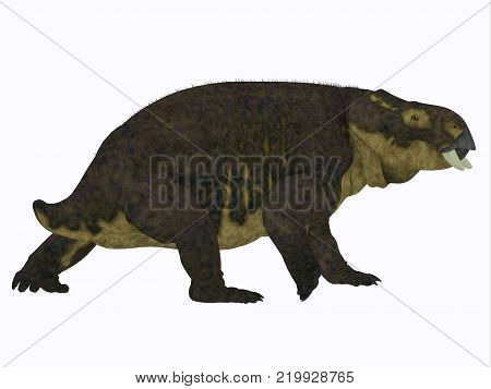 Placerias Dinosaur Tail 3D illustration - Placerias was a herbivorous dicynodont dinosaur that lived in Arizona, USA in the Triassic Period.