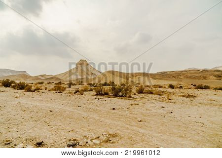 Landscape scenic view on wild rocks and sand in dry desert in Israel. Hot middle east wilderness. Scenic outdoor view on dirt land. Summer heat and sunlight, nobody on photo