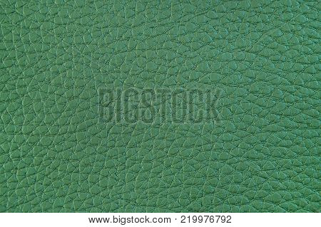 Texture of artificial leather. Light green background or leatherette backdrop.