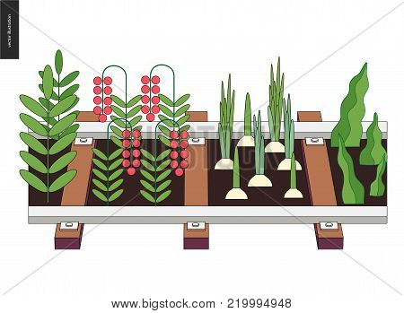 Urban farming, gardening or agriculture. Seedbed made in railing