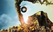 Abstract conceptual photo of a fantastical fairy tale landscape with a clock hanging from a branch poster