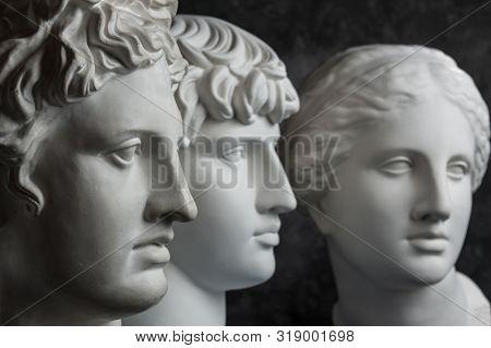Gypsum Copy Of Ancient Statue Apollo, Antinous And Venus Head On Dark Textured Background. Plaster S