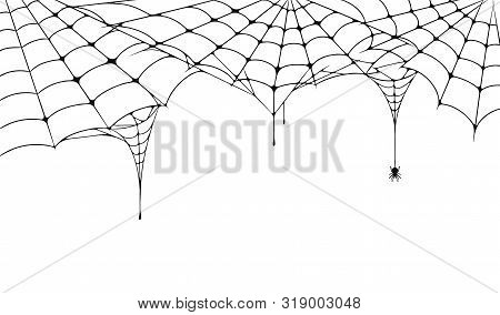 Scary Spider Web, Halloween Festive Background. Cobweb On White Background With Spider. Spooky Spide