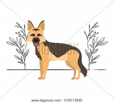 Cute Pastor Aleman Dog On White Background Vector Illustration Design