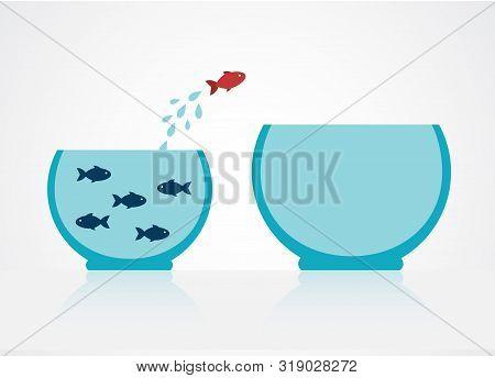 Blue Fish In A Cramped Aquarium. One Red Fish Decided To Jump Into A Large Aquarium