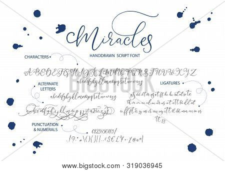 Hand Drawn Vector Alphabet Font Font With Letters, Numbers, Symbols Alternates And Ligatures. For Ca