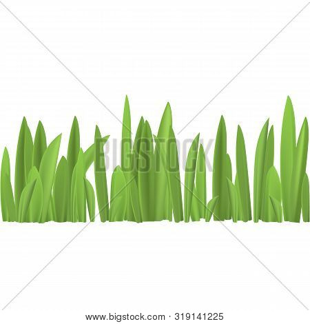 Spring Grass On White Background, Without Borders, Vector