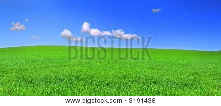 Beautiful Panoramic View Of Peaceful Grassland